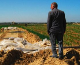 Gazan agriculture suffers