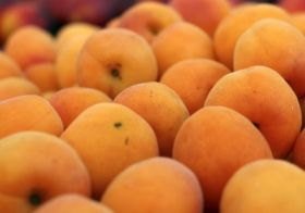 Australian dried fruit sector receives boost