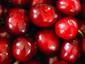 Ukraine boosts cherry volumes