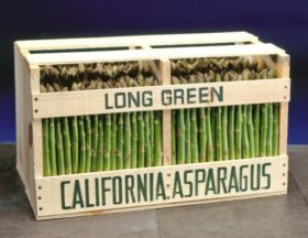 "Californian asparagus set for ""great year"""