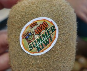 Chile to market Summerkiwi in Korea