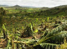 Volcano ash darkens Guadeloupe's season