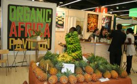 Africa back big for BioFach