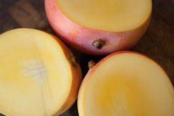 Australian mango season falls short