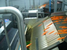 Radix launches new carrot sorter