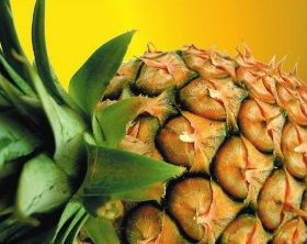 Pink pineapple gets FDA backing