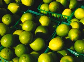 Limes escape hurricane wrath
