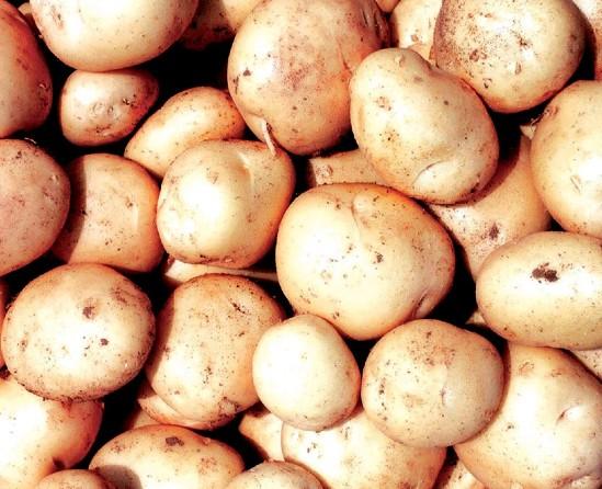 Pakistani potatoes expected to hit target
