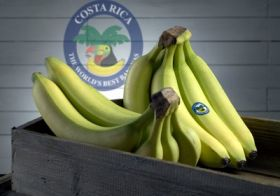 Costa Rica bananas target Middle East
