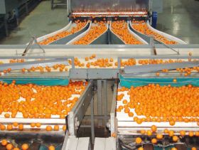 Spain kicks off US citrus campaign