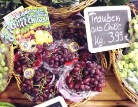 Promising outlook for Chilean fruit