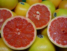 Honduran grapefruit exporter 'confident'