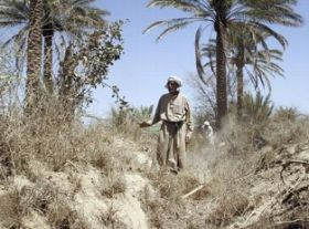 Severe drought hits Iraq