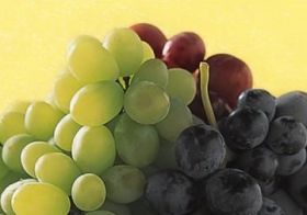 Korea and Australia eye grape trade