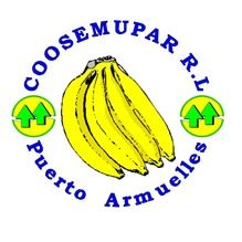 Bidding underway for Panama banana coop