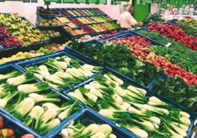 Switching to veggie diet could help 'reverse diabetes'