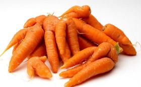 Carrot growers assess damage