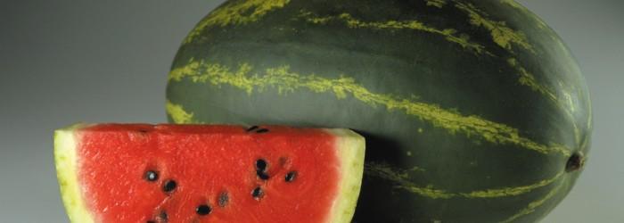 Veggie yoghurt and watermelon juice set to take off