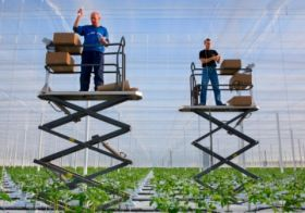 Thanet Earth to open new greenhouse