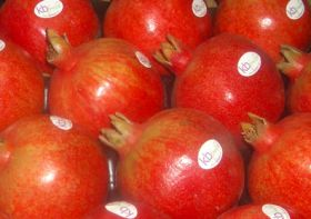 Fruit World unveils pomegranate facility