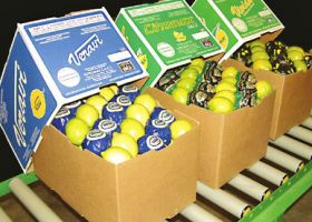 Strong showing for Argentine citrus