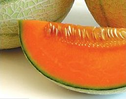 FDA issues cantaloupe industry letter