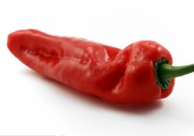 Agrexco launches organic pepper