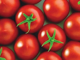 Tomato scare for Tesco Hungary