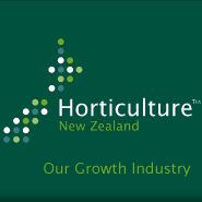 New Zealand food prices to remain high