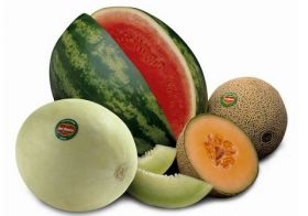 Del Monte invests in Guatemalan melons