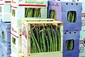 Sales rebound for Peru asparagus
