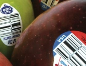 Food fraud risks grow