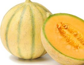 Spain aims high with Murcian melons