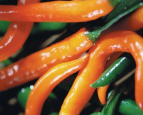 Serrano pepper recall in US