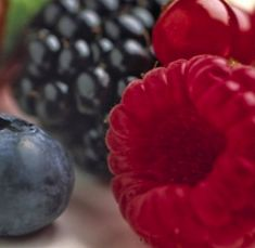 Chile mulls Colombia berry potential