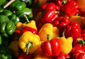 """Positive Evolution"" for Spain's veg exports"