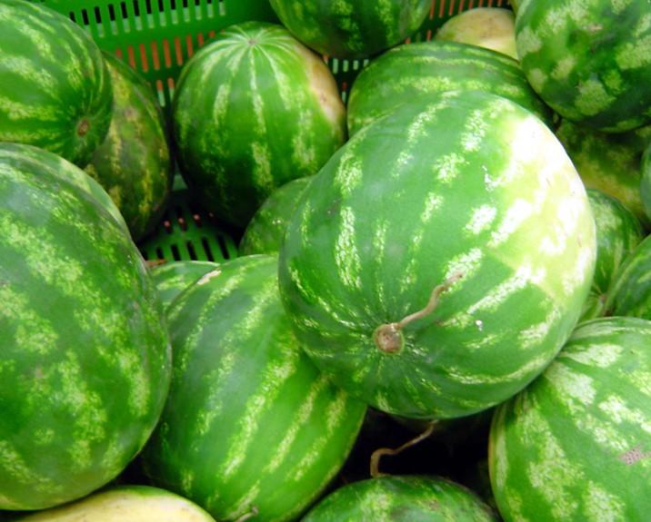 Lebanese watermelon growers raise fears