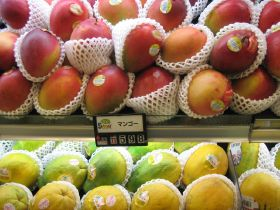 Brazil seals Kent mango deal with Japan