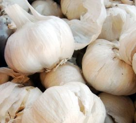 Garlic glut crushes Chinese exports
