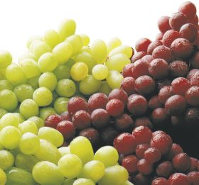 CA grapes moving at record pace