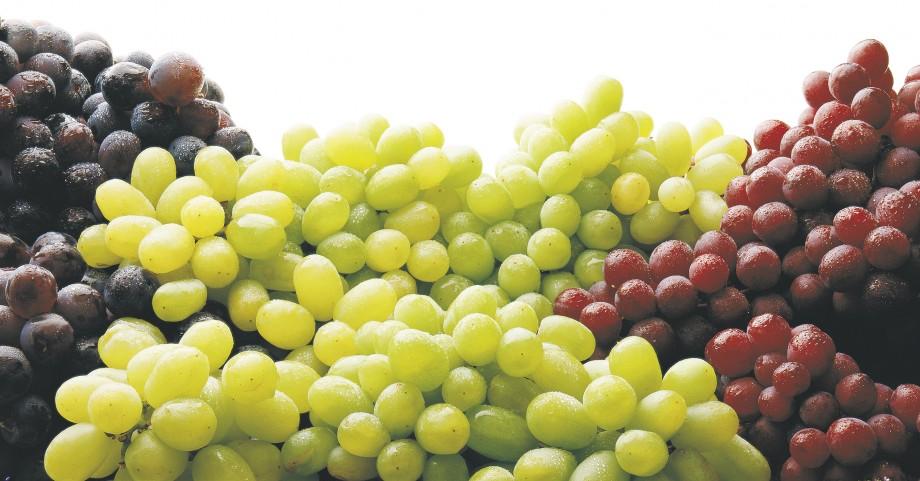 fruit australia season