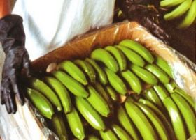 Heavyweights eye Cambodian banana project