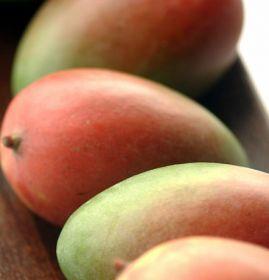 US: Mexican mango shortage to continue