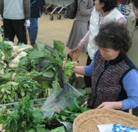 Local support for Korean growers
