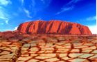 Drought takes toll on Australian navels