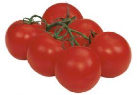 Dutch tomato exports under pressure