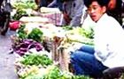 Food price hike drives inflation in China