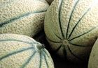 Melon sales down for Anecoop