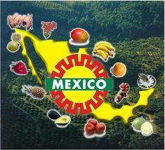 Mexico focused on EurepGAP