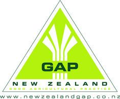 NZ bridges international GAP